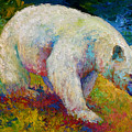 Creamy Vanilla - Kermode Spirit Bear Of Bc by Marion Rose