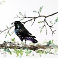 Crow On Branch by Carolyn Doe