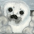 Curious Arctic Seal Pup by Tanna Lee M Wells