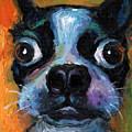 Cute Boston Terrier Puppy Art by Svetlana Novikova