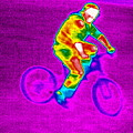 Cycling, Thermogram by Tony Mcconnell