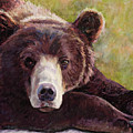 Da Bear by Billie Colson