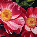 Dance Of The Peonies by Billie Colson