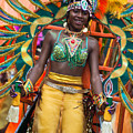 Dc Caribbean Carnival No 16 by Irene Abdou
