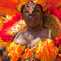 Dc Caribbean Carnival No 23 by Irene Abdou