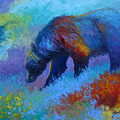 Denali Grizzly Bear by Marion Rose