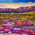 Desert In Bloom by Johnathan Harris