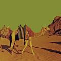 Desert Trek by Elizabeth Hoskinson
