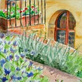 Dievole Vineyard by Judy Swerlick