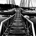 Dock And Sailboats by Kevin Mitts