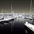 Dock In The Port by John Rizzuto