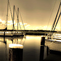 Dog River Marina by Gulf Island Photography and Images