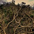 Dolwyddelan Castle by Meirion Matthias