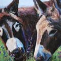 Donkey Tonk by Billie Colson