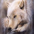 Dreamscape - Wolf by Sandi Baker