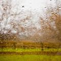 Droplets I by Derek Selander