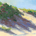Dune Roses by Barbara Hageman