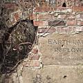 Earth Laughs In Flower Wall by Tom Mc Nemar