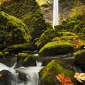 Elowah Autumn by Mike  Dawson