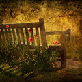 Empty Bench And Poppies by Svetlana Sewell