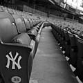 Empty Stadium by Michael Albright