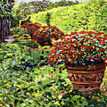 English Flower Pots by David Lloyd Glover