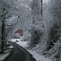 Esso Barn In Winter by Renee Summers