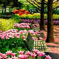 Eternal Spring by John Lautermilch