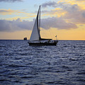 Evening Sail by Cheryl Young