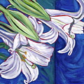 Faith Lily Two by Dawn Thrasher