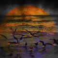 Fantasy Wings by Susanne Van Hulst