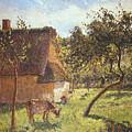 Field At Varengeville by Camille Pissarro