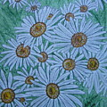 Field Of Wild Daisies by Kathy Marrs Chandler