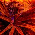 Fiery Palm by Susanne Van Hulst