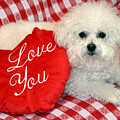 Fifi Loves You by Michael Ledray