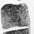 Fingerprints Of Vincenzo Peruggia, Mona by Photo Researchers