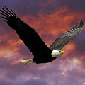 Fire Cloud And Eagle by Clarence Alford