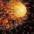 Fire Flower by Karen Wiles