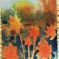 Fire Storm In The Wild Flower Meadow by Amy Bernays