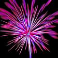 Fireworks Americana by Steve Ohlsen