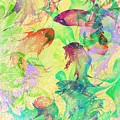 Fish Dreams by Rachel Christine Nowicki