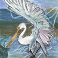 Fishing Egret by Stu Hanson
