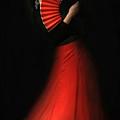 Flamenco by Viktor Korostynski
