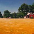 Flower Field 1 by Doug Strickland