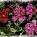 Flower Sketch by David Lane