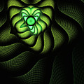 Fractal Cobra by John Edwards