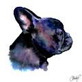 French Bulldog Portrait by Christy  Freeman