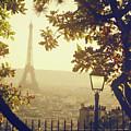 French Romance by by Smaranda Madalina Cheregi