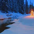 Glowing Christmas Tree By Mountain by Carson Ganci