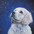 Golden Retriever Pup In Snow by Lee Ann Shepard